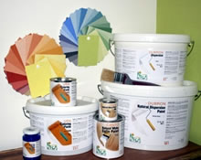 Natural no VOC Paints and Tints