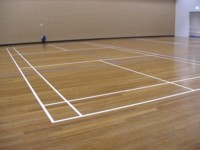 Basket Ball Court - After lines
