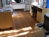 Hardwood in an Office - Sanded then oiled with Ardvos Universal Wood Oil #266.