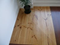 Radiata Pine in showroom - various stains.