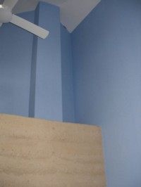 Capri blue wall and White ceiling - The eco paints dry matt and are breathable.