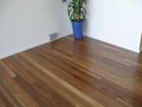 Floor of Spotted Gum