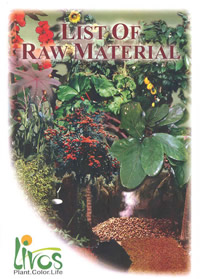 List of Raw Materials Document